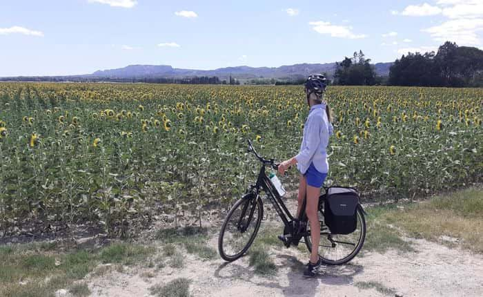 Cycling in Provence