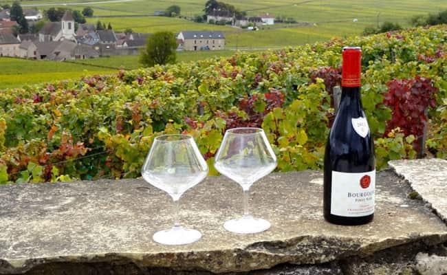 Burgundy wine