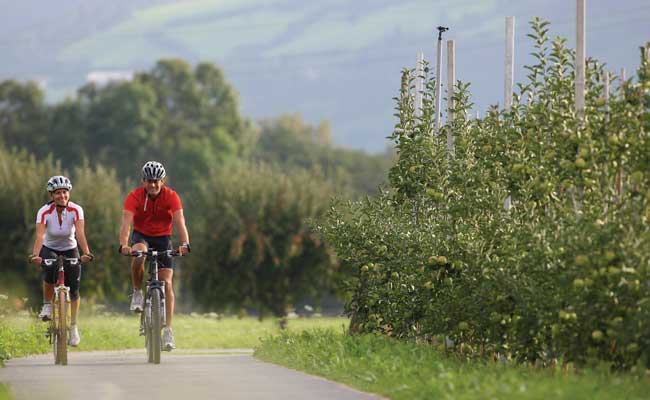 Best easy cycling routes in Europe