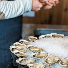 Bordeaux Oysters
