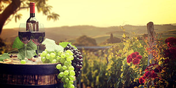 Bordeaux, one of the best wine regions