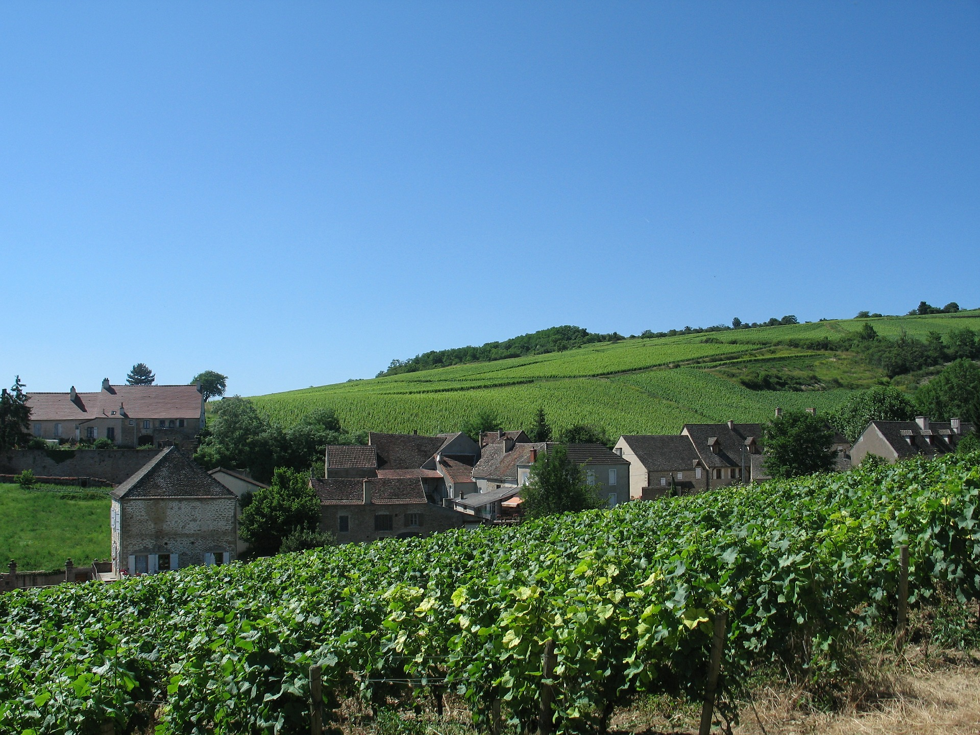 burgundy-france-sunny-day