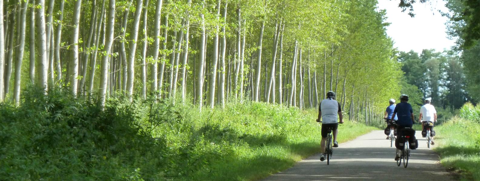 Cycling in Burgundy