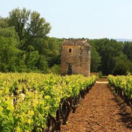 Côtes du Rhône in Provence | Self Guided