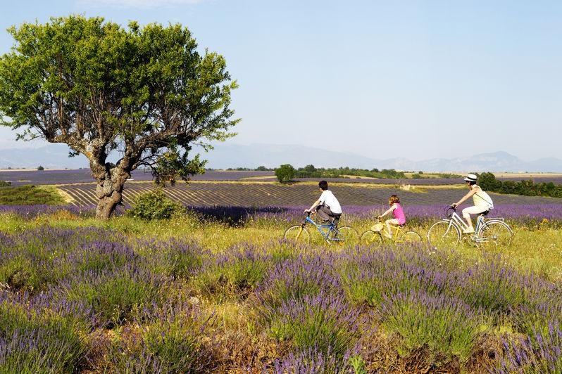 Family Cycling Holidays