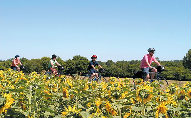 Best family cycling holidays