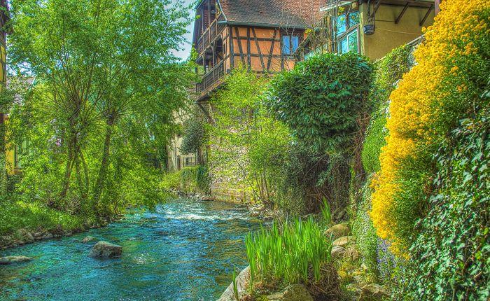 kaysersberg-village-flowers