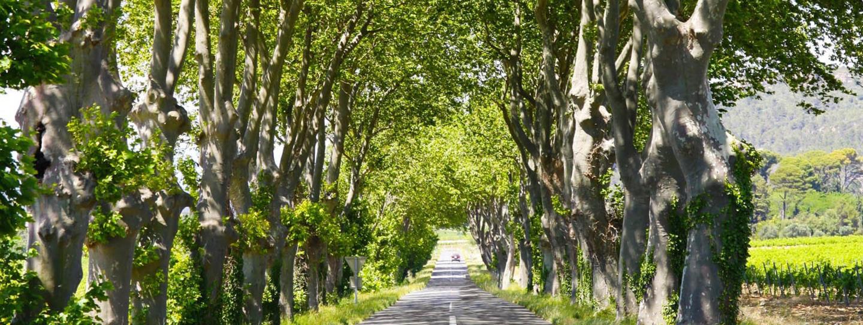 Cycling in Bordeaux