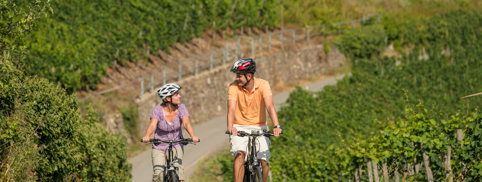 Vineyard Cycling