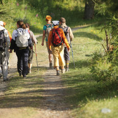 Walkers on the St Francis Trail