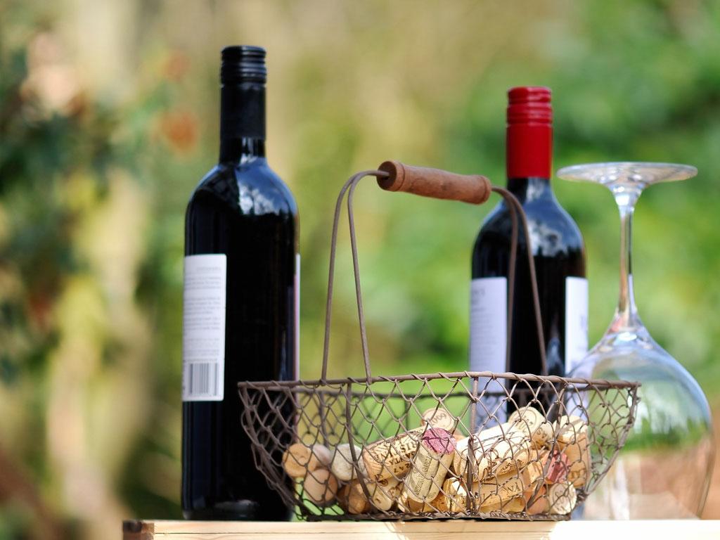 Wines of Cote du Rhone